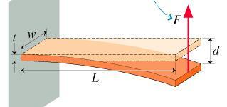 rigidity is higher at outer layers, according to the equation of flexural rigidity.