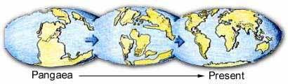 Alfred Wegener, a German scientist, proposed the hypothesis of CONTINENTAL DRIFT, in 1912.
