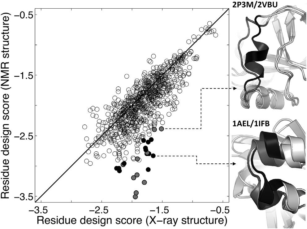 Figure 6. Despite Being Sensitive to Incorrectly Predicted Structures, Design Score Is Robust to Local Differences between NMR and X-Ray Structures Each dot represents a single residue.