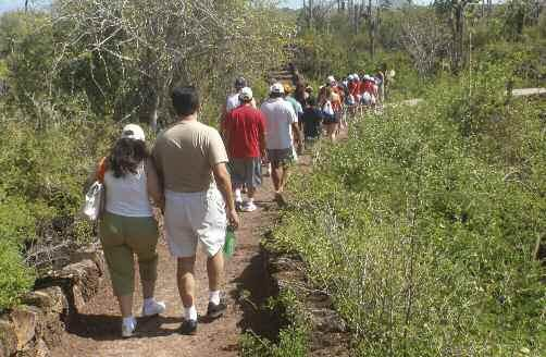Photo 1. Group of national tourists walking to Las Grietas, Santa Cruz. Photo: C. Grenier. most frequent responses were low-impact tourism and a conservation conscience.