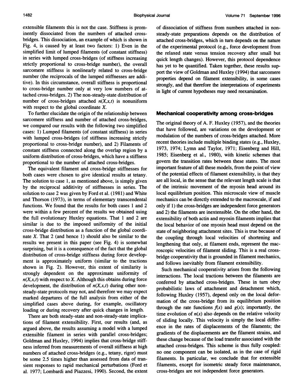 1 482 Biophysical Journal Volume 71 September 1996 extensible filaments this is not the case. Stiffness is prominently dissociated from the numbers of attached crossbridges.