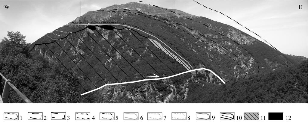 FORWARD MODELLING OF THE MONTAGNA DEI FIORI FAULT-RELATED FOLD, APENNINES 227 buried, instead, beneath an angular unconformity, by resedimented clastic beds (carbonate breccias and turbidites) of the