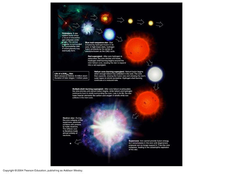 Life of a High-Mass Star 1. Main Sequence: H fuses to He in core 2. Red Supergiant: H fuses to He in shell around He core 3.