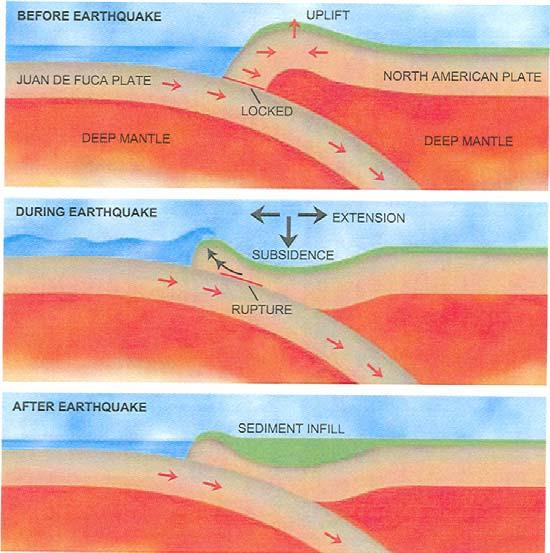 6 Figure 5.7 Earthquake Example Stress Relief! The series of events that lead to an earthquake in a subduction zone.