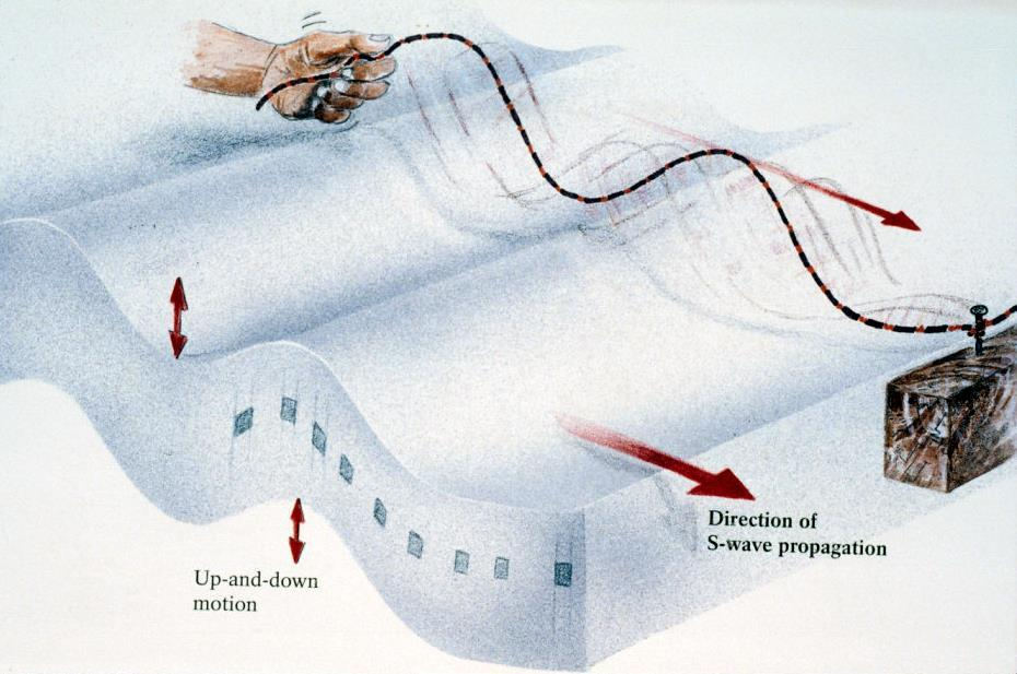 Seismic wave evidence: Shear waves (S wavevs): velocity