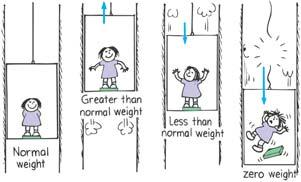 weightlessness Weight and Weightlessness Weight and Weightlessness When an elevator
