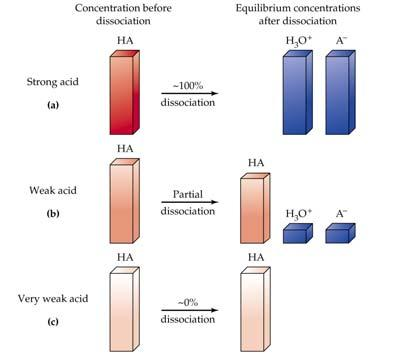 Strengths of Acids and Bases B-L Acids and bases have varying strengths.