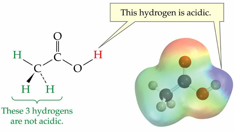 The Bronsted-Lowry Definition of Acids and Bases Bronsted-Lowry Acids: : Any substance that is able to give a hydrogen ion, H +, to another ion