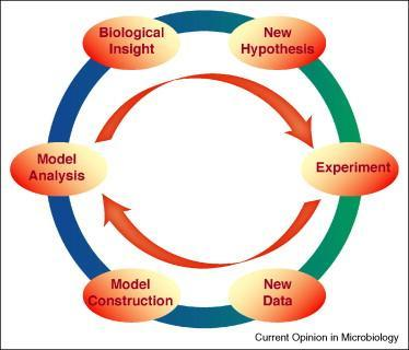 Integrative systems biology involving the