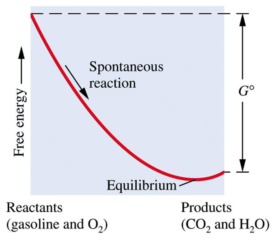 System at Equilibrium Neither spntaneus nr nnspntaneus In state f dynamic equilibrium G prducts = G reactants G= 0 Cnsider freezing f water at 0 C H 2 O(l) H 2 O(s) System remains at equilibrium as