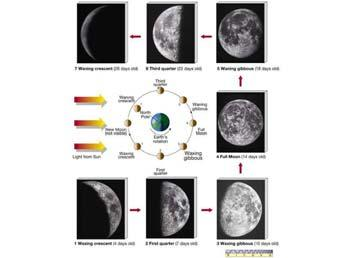 Phases of the Moon Eclipses Can occur only if the alignment is precise (Earth, Moon, and Sun line