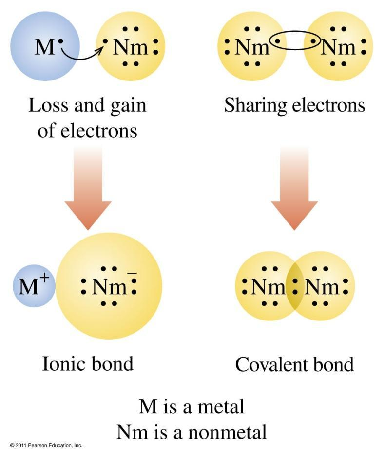 Ionic and Covalent Bonds Ionic bonds involve loss of electrons by a metal