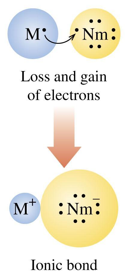 Metals Form Positive Ions Metals form positive ions (CATIONS) by a loss of their valence electrons with the electron configuration of their