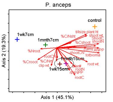 Figure 4.7: PCA results for each species using all traits and grouped by treatment.