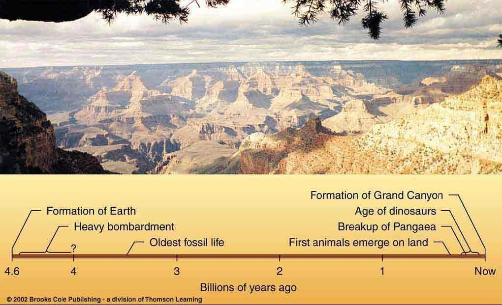 History of Geological Activity Surface formations visible