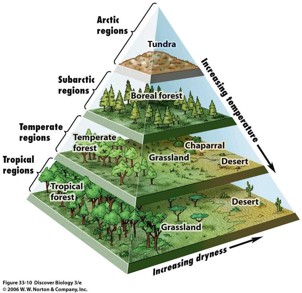 portion ant: nonliving portion Sentence: A biome is characterized by its climate and