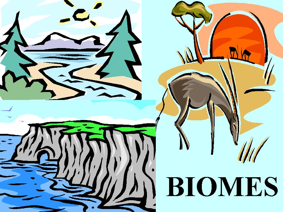 SB4: Students will assess the dependence of all organisms on one another and the flow of energy and matter within their ecosystem.