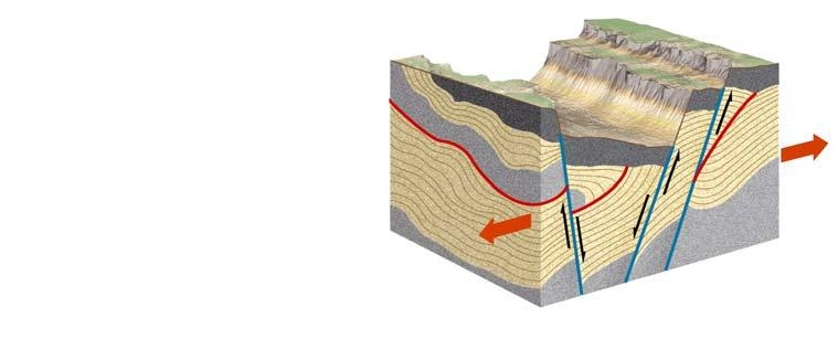Tensional forces cause normal faults,