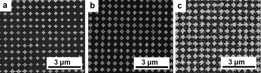 SEM images of Long-range ordered substrate of 350 nm