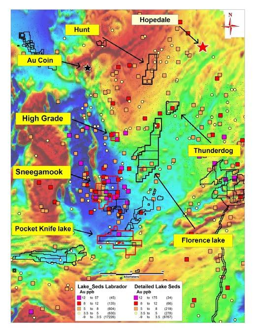 Nain-Hopedale Geochemistry Gold in lake sediments Arsenic in lake sediments No gold exploration ever undertaken at Smeegemook or Pocket Knife Lake Hopedale greenstone volcanics show
