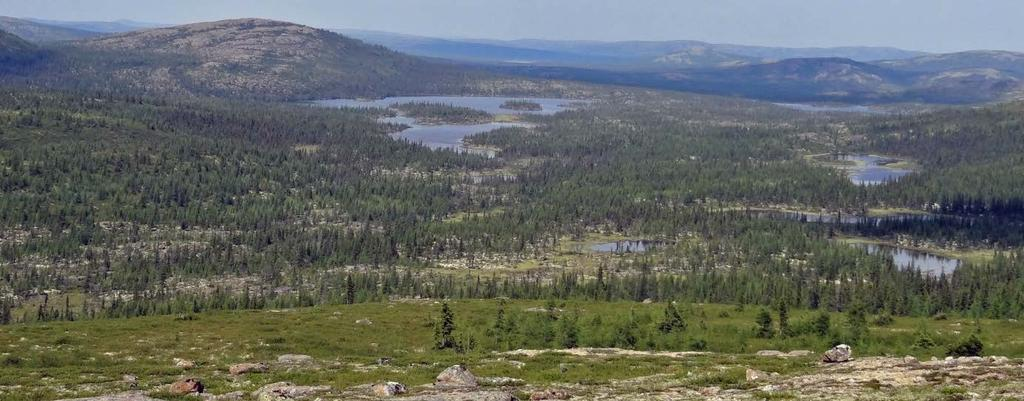 Labrador Golden Opportunity Large under-explored properties, including significant portion of greenstone belt Potential for discovery of new gold district(s) Experienced exploration management with