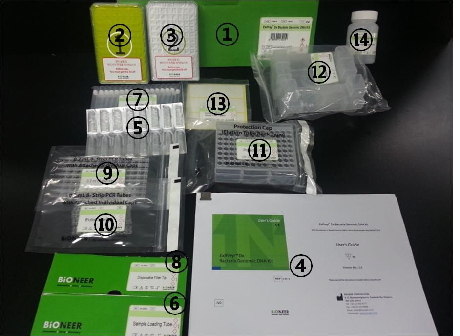 ExiPrep TM Dx Bacteria Genomic DNA Kit 3. Clinical significance Bacteria are very common microbes living in the environment and in the human body.
