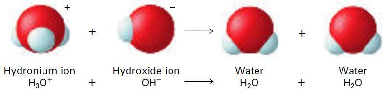 NEUTRALIZATION REACTIONS In general, reactions in which an acid and a base react in an aqueous solution to produce a salt and water are called neutralization reactions.