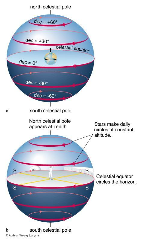 The Sky at the North Pole At the North Pole, the North Celestial Pole is at
