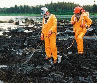 Other bioremediation applications include cleaning up oil spills (Figure 27.23) and precipitating radioactive material (such as uranium) out of groundwater.