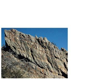slaty cleavage planes Bedding vs Foliation Foliation depends on stress direction and can be at 9 angle to bedding shale bedding planes sandstone