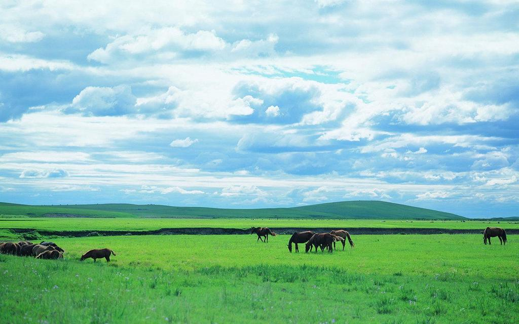 Grasslands are biomes that are covered with many types of grasses and have few trees.
