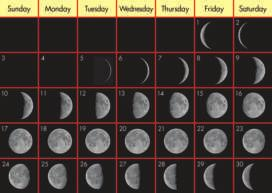 Phases of the Moon Have you noticed that the Moon appears to change shape at different times of the month? These different shapes are called Moon phases.