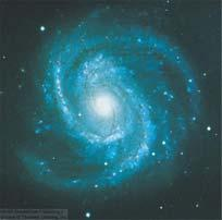 Grand-Design Spiral Galaxies The Whirlpool Galaxy