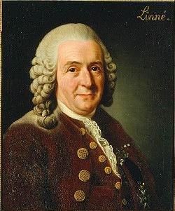 Binomial Nomenclature! Developed by Carolus Linnaeus! Swedish Biologist 1700 s!