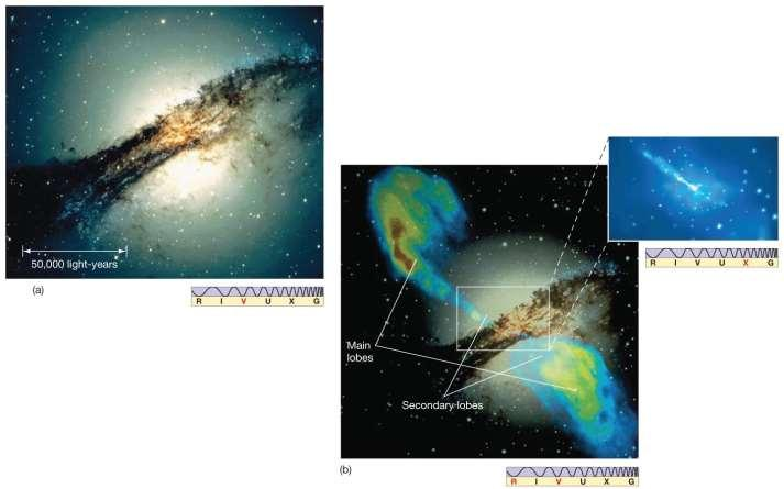 24.4 Active Galactic Nuclei Radio galaxies emit very strongly in the radio portion of the spectrum.
