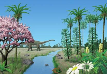 Plants of the Mesozoic Era Plants called gymnosperms dominated the plant population of the Mesozoic era. Gymnosperms produce seeds but no flowers.