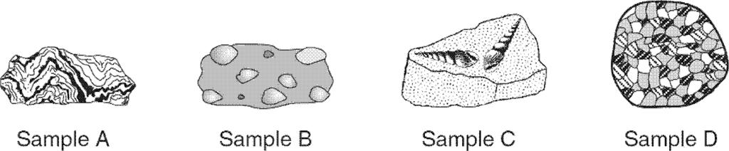 3. The accompanying diagram shows four rock samples. Which sample best shows the physical properties normally associated with regional metamorphism? A. A B. B C. C D. D 4.