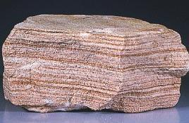 Sedimentary Rocks Rocks formed by consolidation