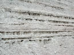 Two Major Types of Sediments Clastic sediments are physically deposited particles derived from weathered