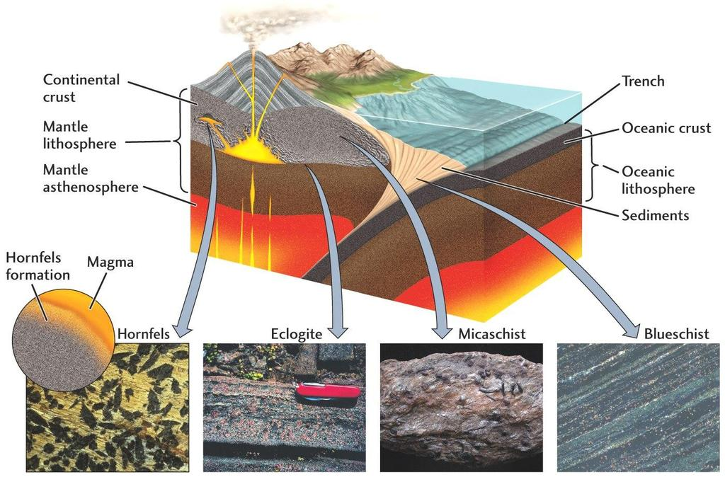 Metamorphic Mineralization Contact