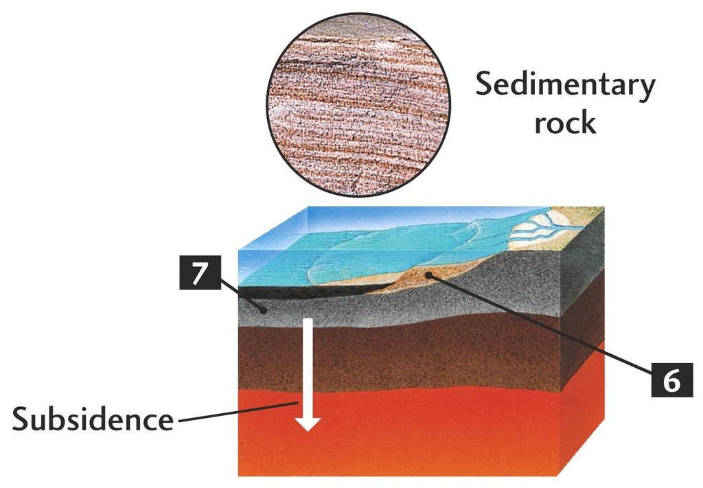 Rock Cycle Sediments are carried
