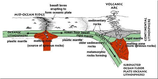Tectonic Environments and Sedimentary Rock Formation 1) Source regions for sediments are primarily