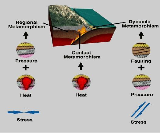 schist, and gneisses 2) Magma Contact = High Heat + Fluids Process termed Contact Metamorphism
