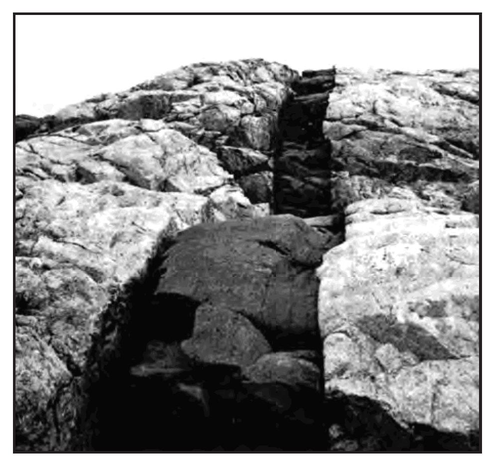 12. The photograph below shows an outcrop where a light-colored, igneous rock is cross cut by a dark-colored, igneous rock.