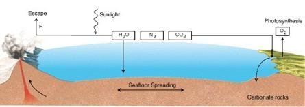 Earth s CO2 cycle Why the difference in CO2 concentration?! Rain washes out CO2! Calcium Carbonate deposits in ocean and on land as rock!