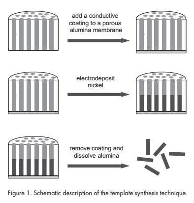 Silver Nanowire Synthesis Template-Assisted Nanowire