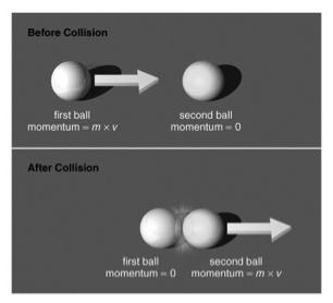 Conservation of Momentum The total momentum of interacting objects cannot change unless an external force is acting on them Interacting objects exchange