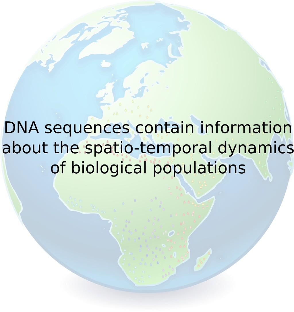From DNA sequences to