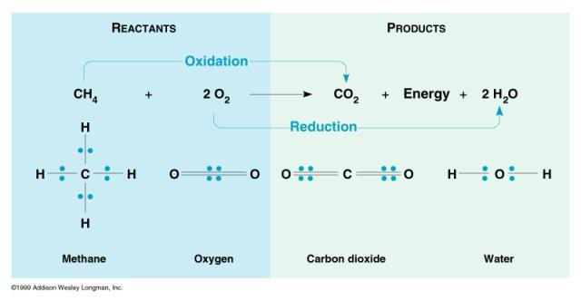 Oxidation-reduction (Redox) Reactions OIL RIG (adding electron reduces +