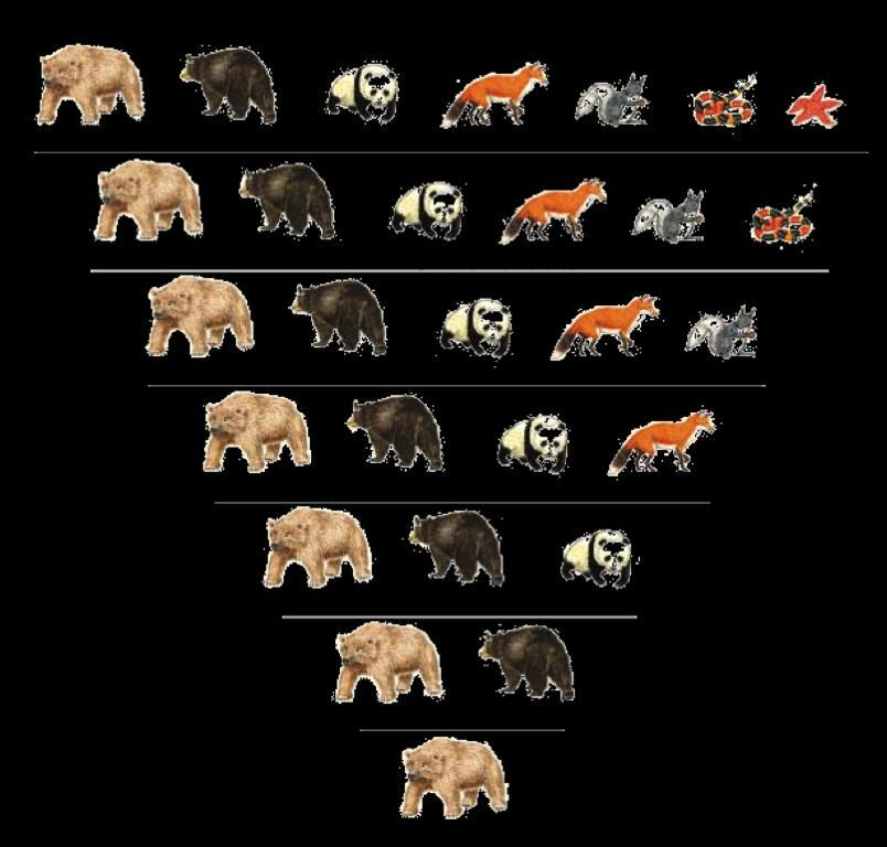 The purpose of taxonomy (the identification and classification of species) is to: Sort out closely related organisms and assign them to separate species,